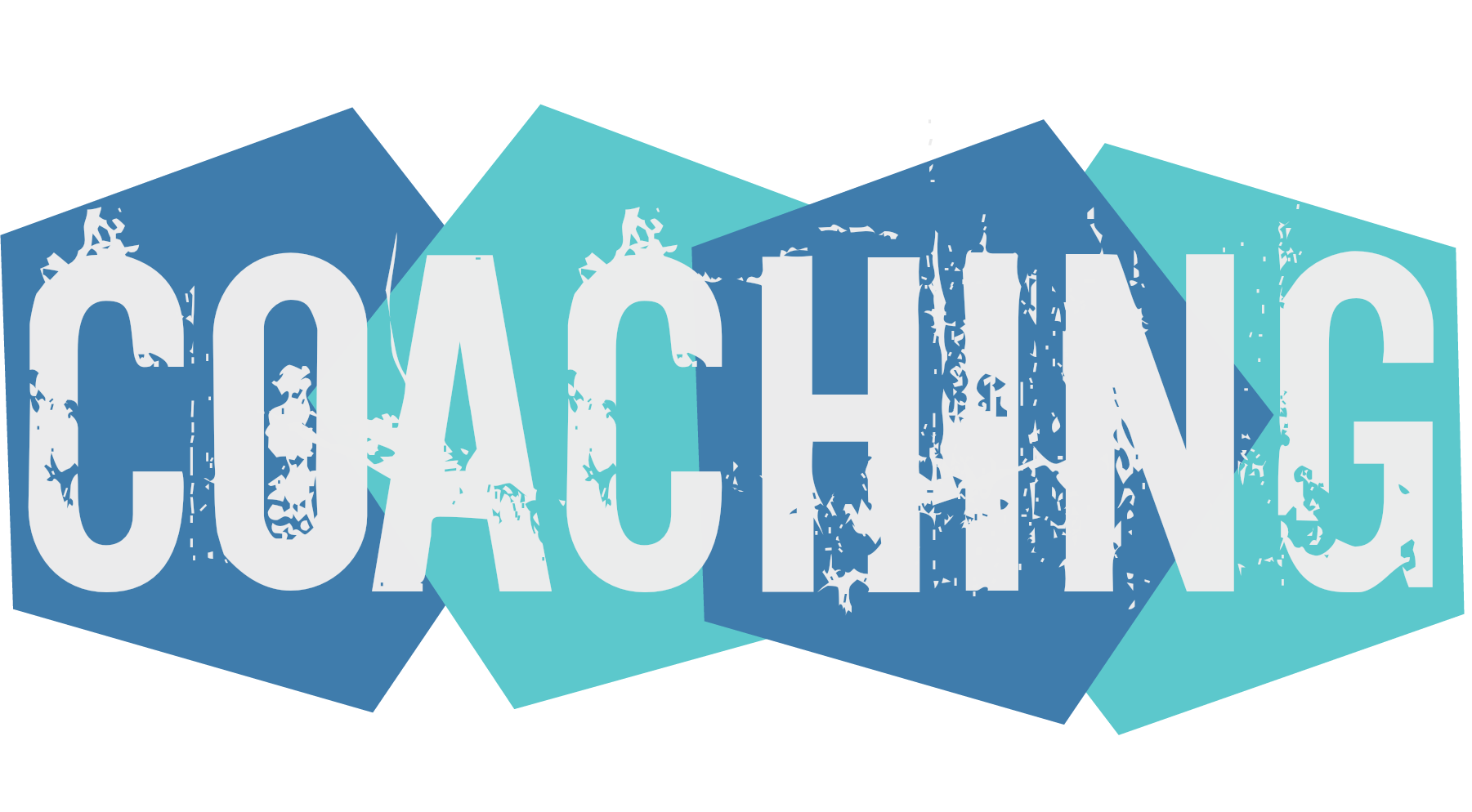 What is an Executive Coach?